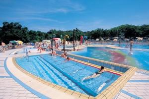 Een zwembad op camping lanterna in Kroatië